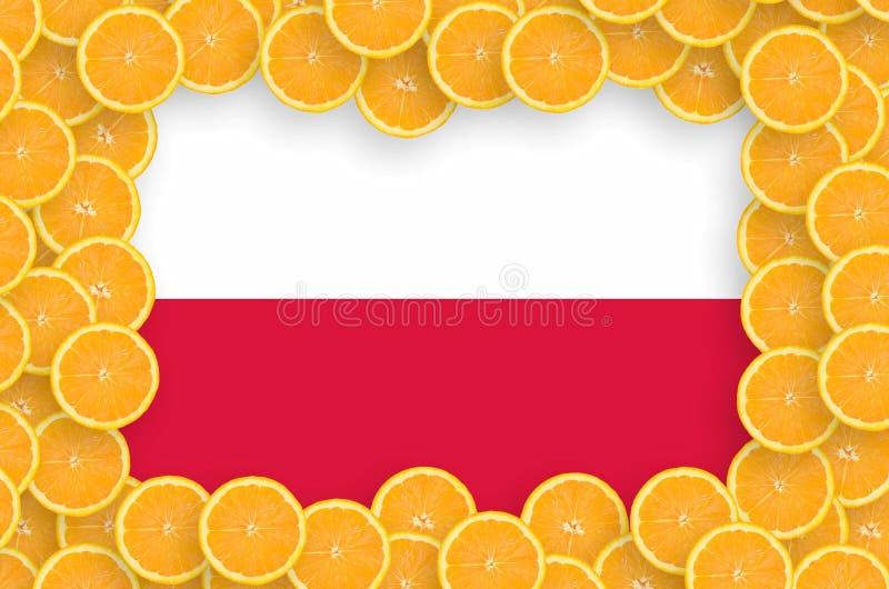 Флаг Польши в свежей рамке кусков цитрусовых фруктов бесплатная иллюстрация