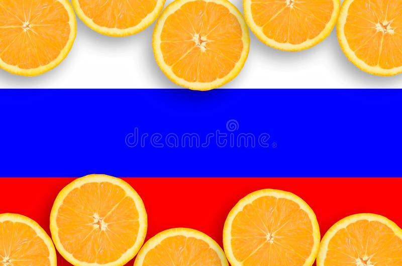 Флаг России в рамке кусков цитрусовых фруктов горизонтальной стоковые фотографии rf