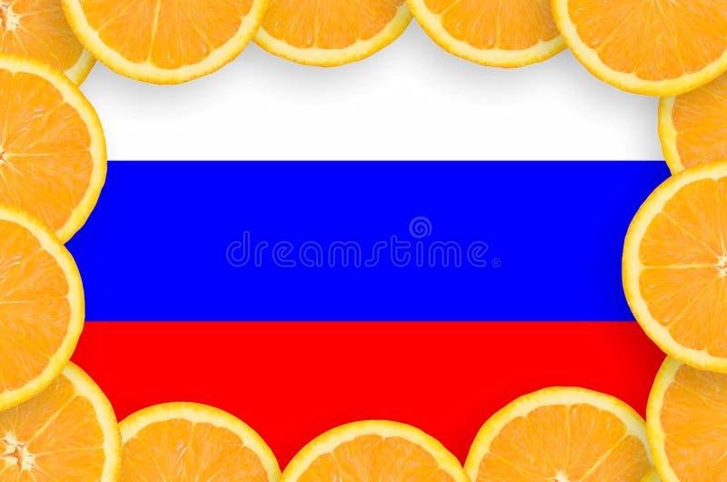 Флаг России в свежей рамке кусков цитрусовых фруктов бесплатная иллюстрация