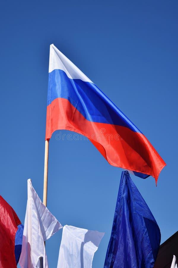Флаг России развевая в ветре Флаг России против неба стоковые изображения