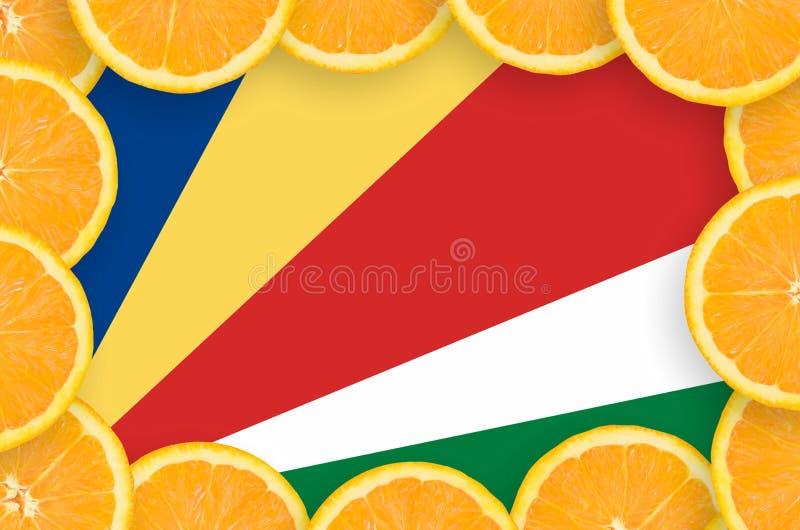 Флаг Сейшельских островов в свежей рамке кусков цитрусовых фруктов иллюстрация штока