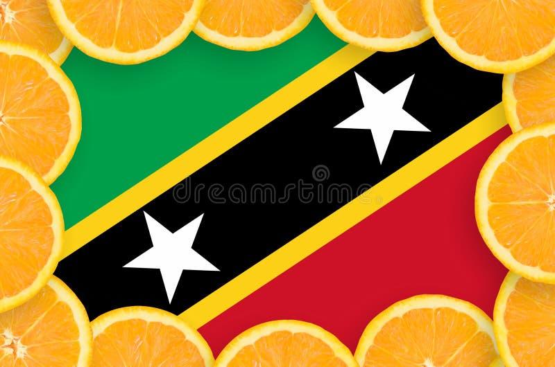 Флаг Сент-Китс и Невися в свежей рамке кусков цитрусовых фруктов иллюстрация штока