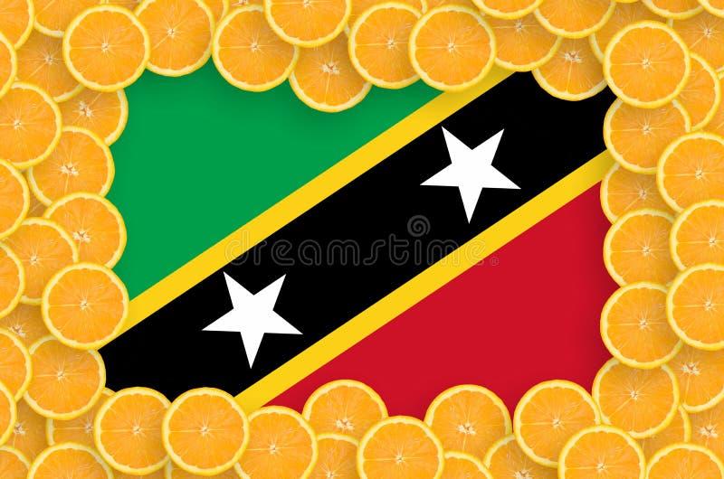 Флаг Сент-Китс и Невися в свежей рамке кусков цитрусовых фруктов иллюстрация вектора
