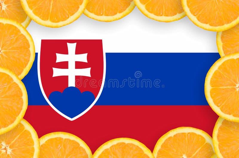Флаг Словакии в свежей рамке кусков цитрусовых фруктов иллюстрация вектора