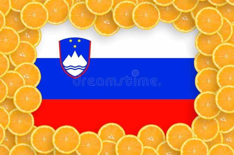 Флаг Словении в свежей рамке кусков цитрусовых фруктов иллюстрация вектора