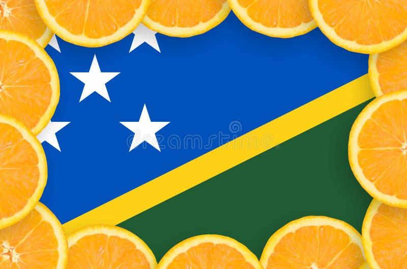 Флаг Соломоновых Островов в свежей рамке кусков цитрусовых фруктов иллюстрация штока