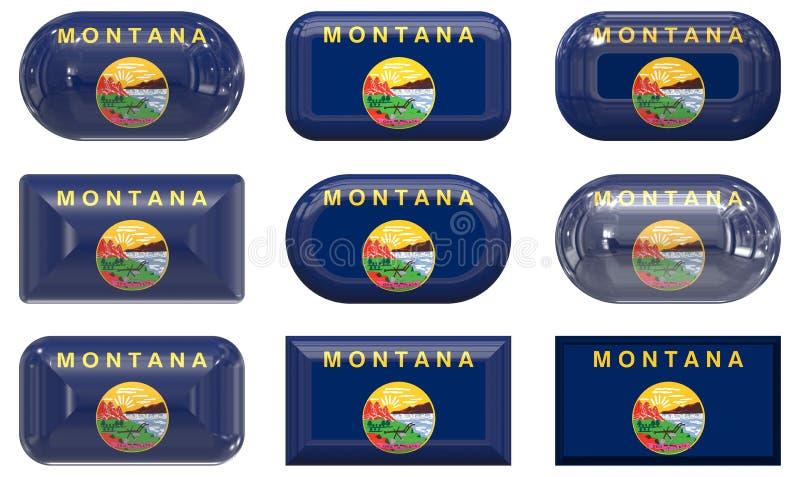 флаг стеклянная Монтана 9 кнопок бесплатная иллюстрация
