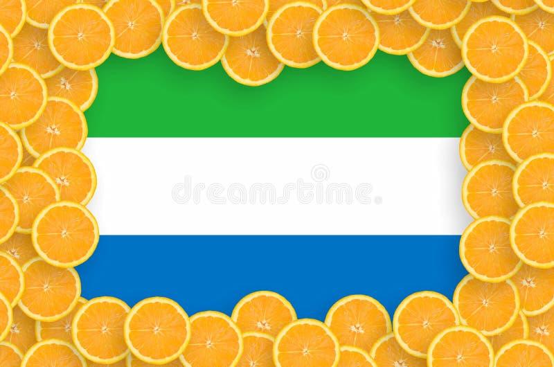 Флаг Сьерра-Леоне в свежей рамке кусков цитрусовых фруктов бесплатная иллюстрация