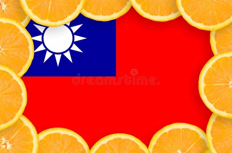 Флаг Тайваня в свежей рамке кусков цитрусовых фруктов бесплатная иллюстрация