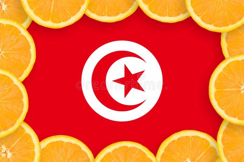 Флаг Туниса в свежей рамке кусков цитрусовых фруктов иллюстрация штока