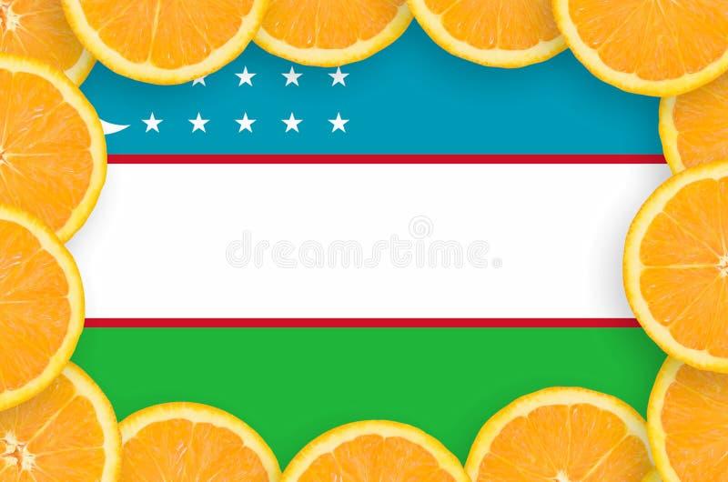 Флаг Узбекистана в свежей рамке кусков цитрусовых фруктов иллюстрация штока