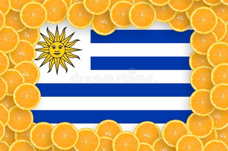 Флаг Уругвая в свежей рамке кусков цитрусовых фруктов иллюстрация штока