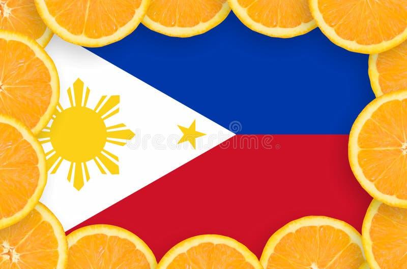 Флаг Филиппин в свежей рамке кусков цитрусовых фруктов бесплатная иллюстрация