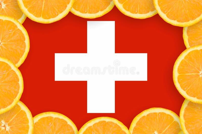 Флаг Швейцарии в свежей рамке кусков цитрусовых фруктов бесплатная иллюстрация