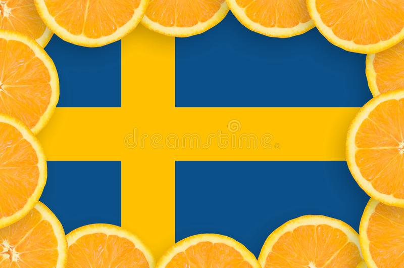 Флаг Швеции в свежей рамке кусков цитрусовых фруктов бесплатная иллюстрация