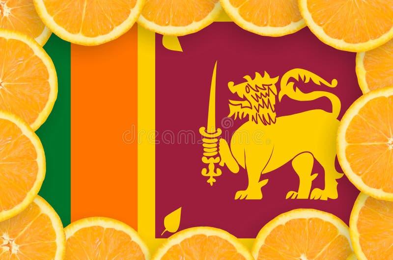 Флаг Шри-Ланка в свежей рамке кусков цитрусовых фруктов иллюстрация штока