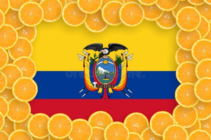 Флаг эквадора в свежей рамке кусков цитрусовых фруктов иллюстрация штока