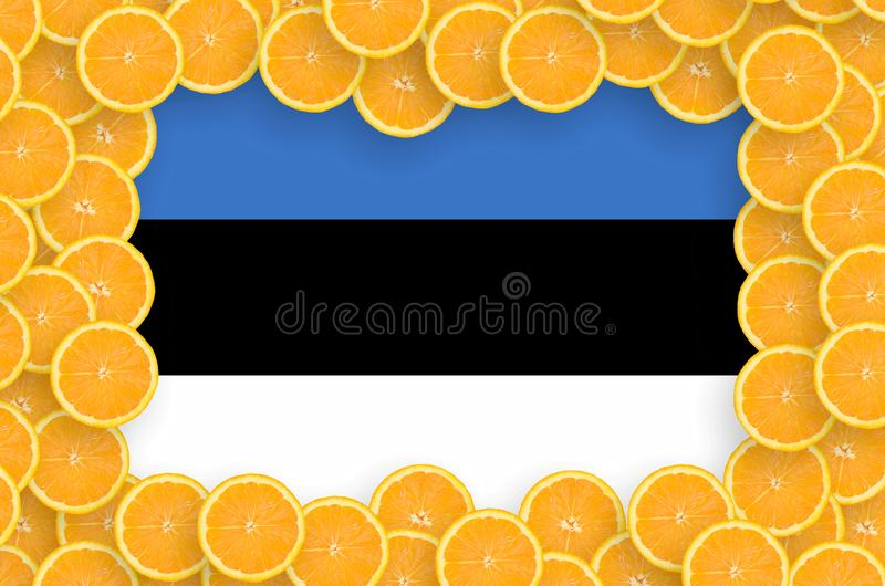 Флаг Эстонии в свежей рамке кусков цитрусовых фруктов иллюстрация вектора