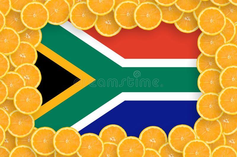 Флаг Южной Африки в свежей рамке кусков цитрусовых фруктов бесплатная иллюстрация