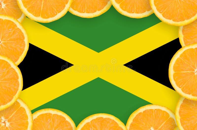 Флаг Ямайки в свежей рамке кусков цитрусовых фруктов иллюстрация вектора