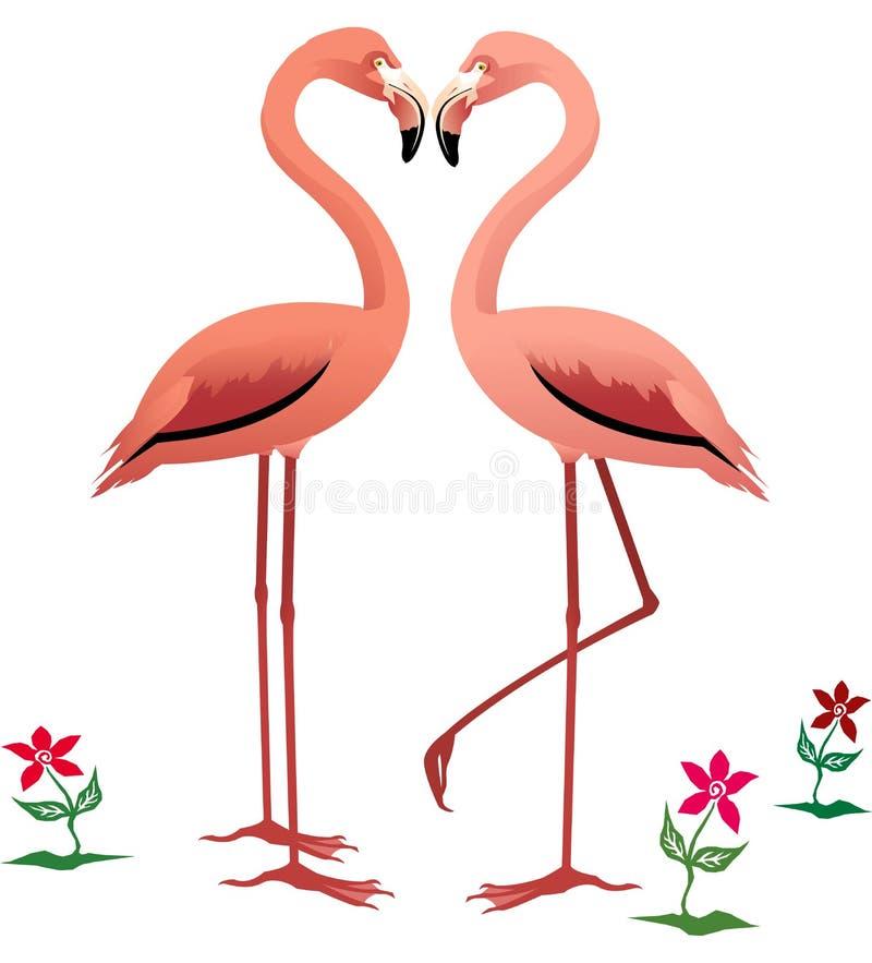 фламингоы бесплатная иллюстрация