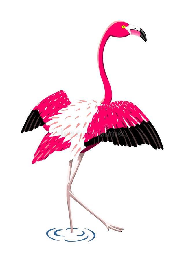фламинго иллюстрация вектора