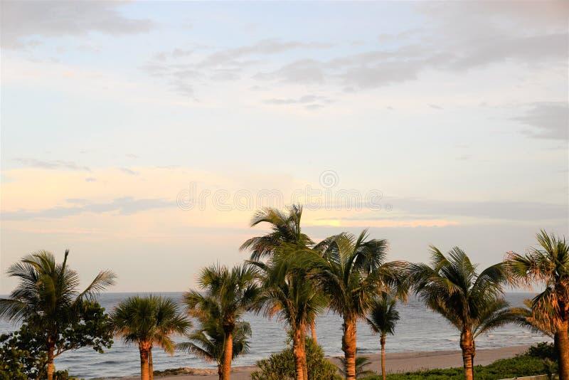 Флорида приставает соперника к берегу самое точное в полностью мире для красоты, мира и потехи стоковая фотография