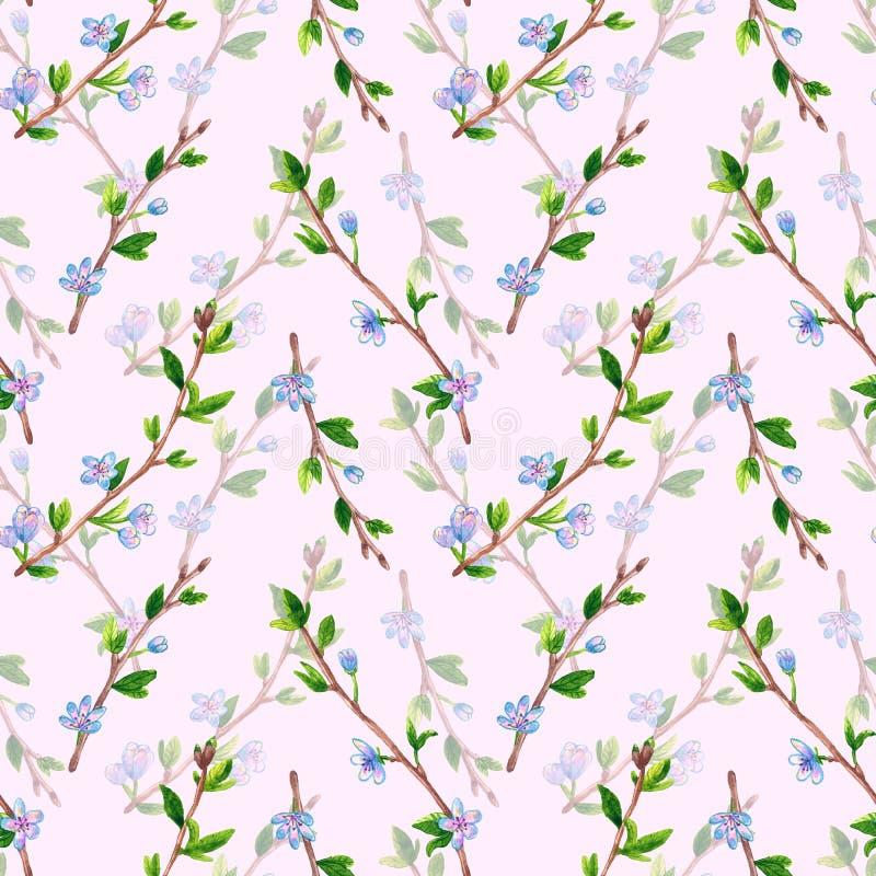 Флористическая безшовная картина с ветвями весны с цветками Яблоко или вишневое дерево Иллюстрация акварели руки вычерченная даль иллюстрация штока