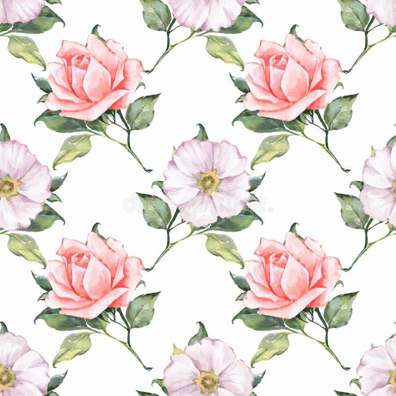 Флористическая безшовная картина с красивыми розами 1 бесплатная иллюстрация