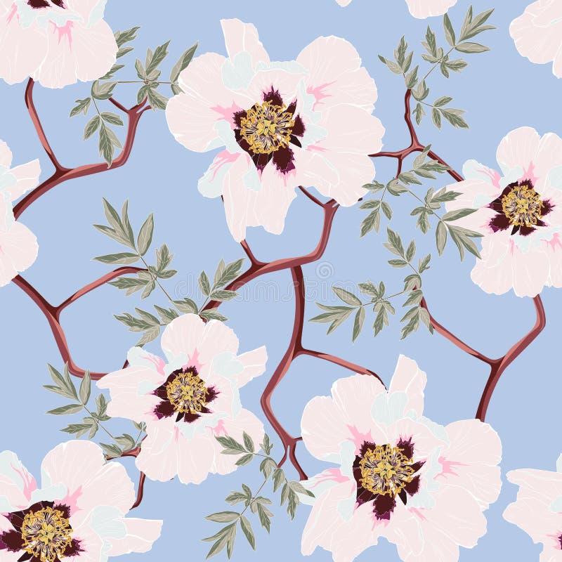Флористическая безшовная картина с розовыми цветками и листьями пиона иллюстрация штока