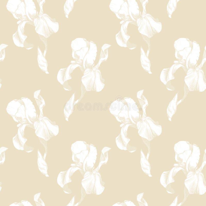 Флористическая безшовная картина с цветками радужки чернил руки вычерченными белыми на бежевой предпосылке Цветки выровнялись вве бесплатная иллюстрация