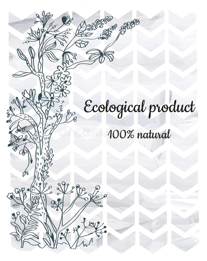 Флористическая предпосылка с элементами геометрии для продукта eco или ярлыка, графической иллюстрации бесплатная иллюстрация