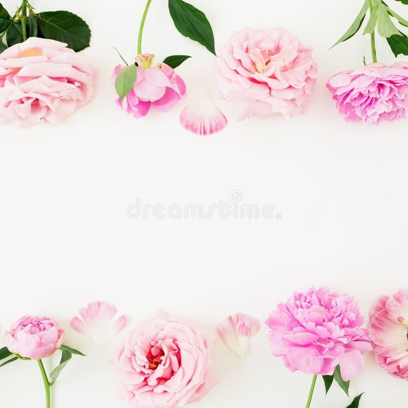 Флористическая рамка границы сделанная розовых роз на белой предпосылке Плоское положение, взгляд сверху Состав дня валентинок стоковое изображение