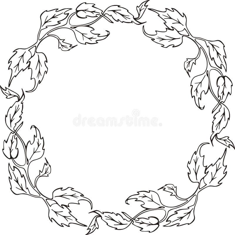 флористическая серия рамки иллюстрация вектора