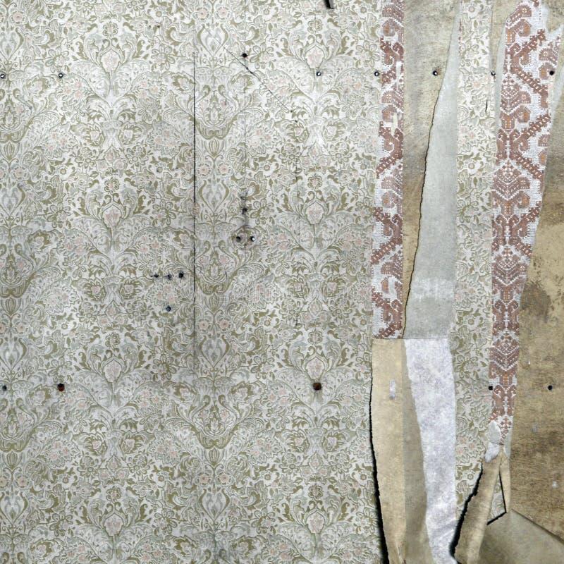 флористические сорванные обои стоковые фото