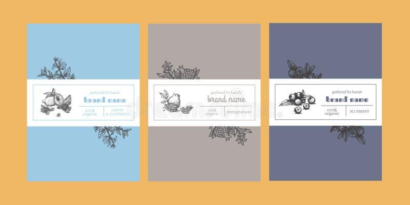 Флористические упаковывая шаблоны с законспектированными элементами дизайна иллюстрация штока