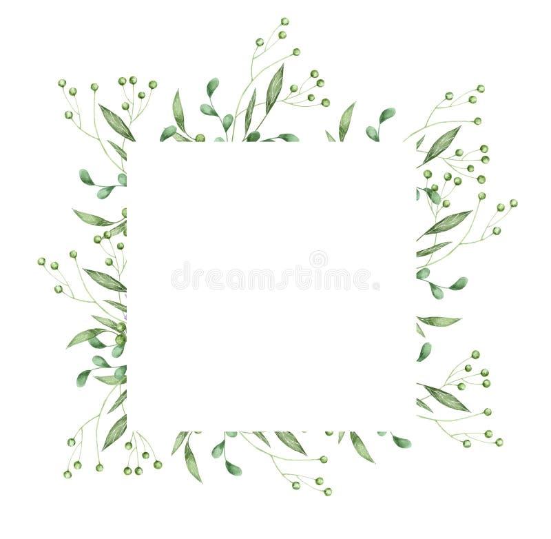 Флористический дизайн карты растительности: зеленый цвет ветви выходит квадратная рамка Свадьба приглашает illustra искусства рук иллюстрация вектора