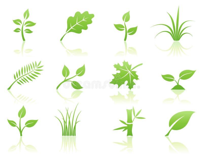 флористический комплект иконы иллюстрация штока