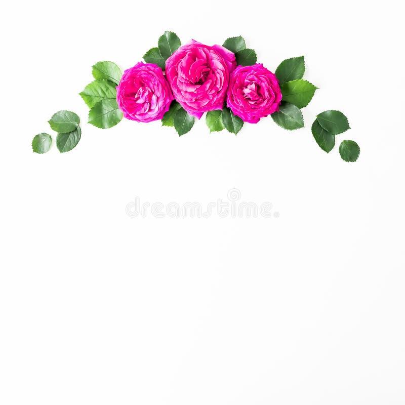 Флористический состав сделанный из розовых роз и листьев зеленого цвета на белой предпосылке Плоское положение, взгляд сверху pla стоковое фото rf