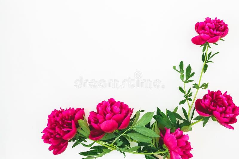 Флористический состав с космосом экземпляра сделанным из красных цветков и листьев пиона на белой предпосылке Плоское положение,  стоковое изображение rf