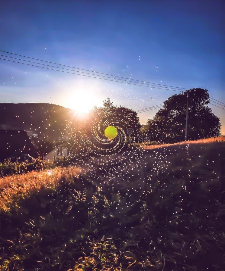 Флюиды захода солнца стоковая фотография rf