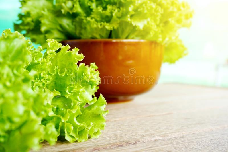 Фокус свежего зеленого салата салата селективный на деревянном столе стоковое фото rf