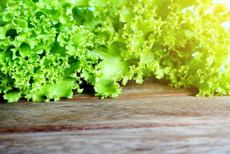 Фокус свежего зеленого салата салата селективный стоковая фотография