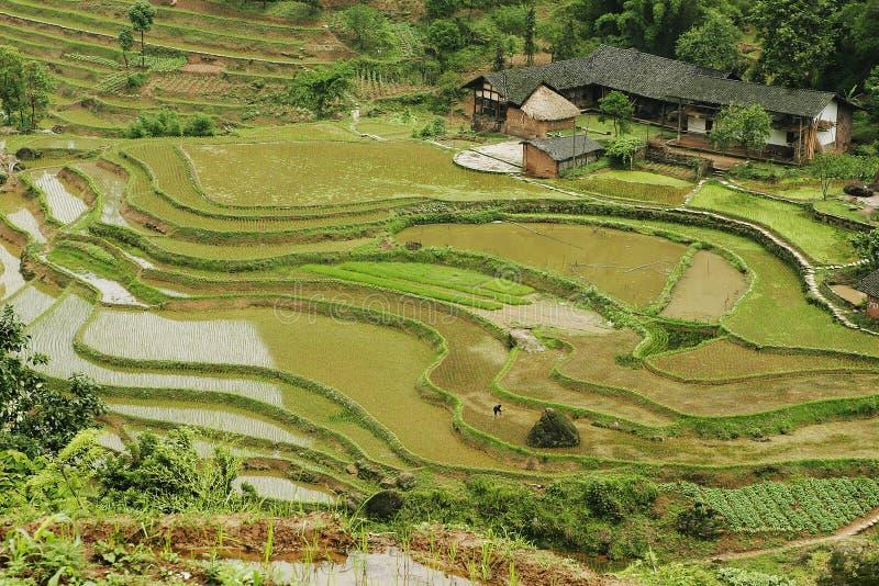 фольклорное fubao house36 стоковые изображения rf