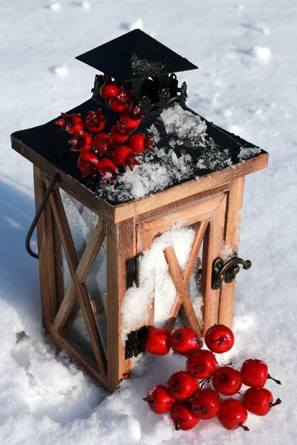 Фонарик в снеге с Crabapples стоковое фото rf