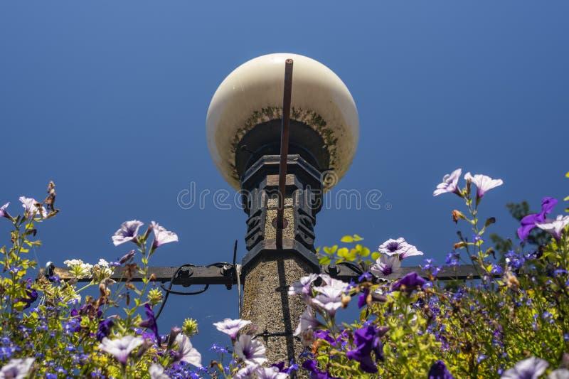 Фонарный столб и цветки подпертые ясным голубым небом стоковая фотография rf