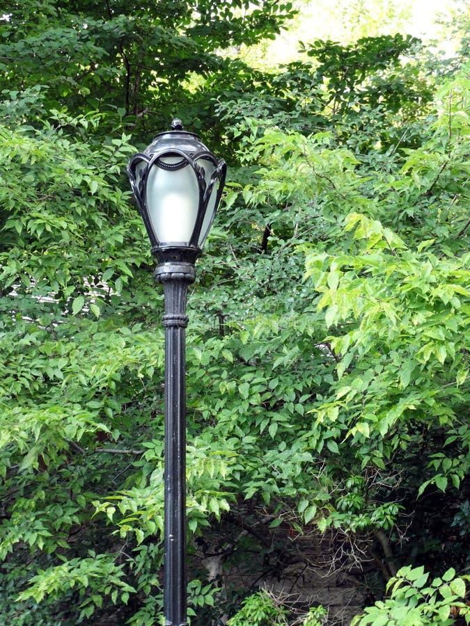 Фонарный столб Central Park стоковое изображение rf