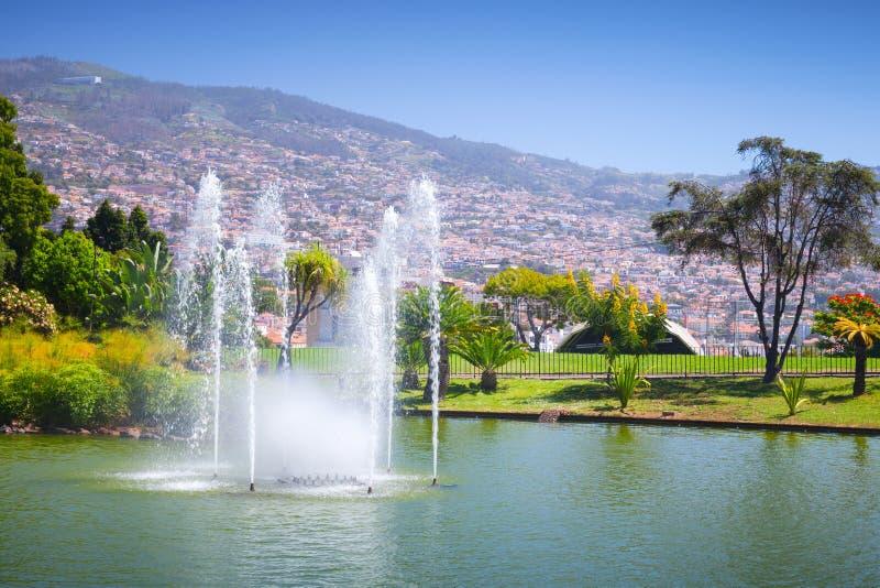 Фонтаны парка Санта-Катарина, Фуншала стоковое изображение