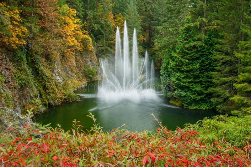 Фонтан в саде Butchart ботаническом в Виктории, Канаде стоковое изображение