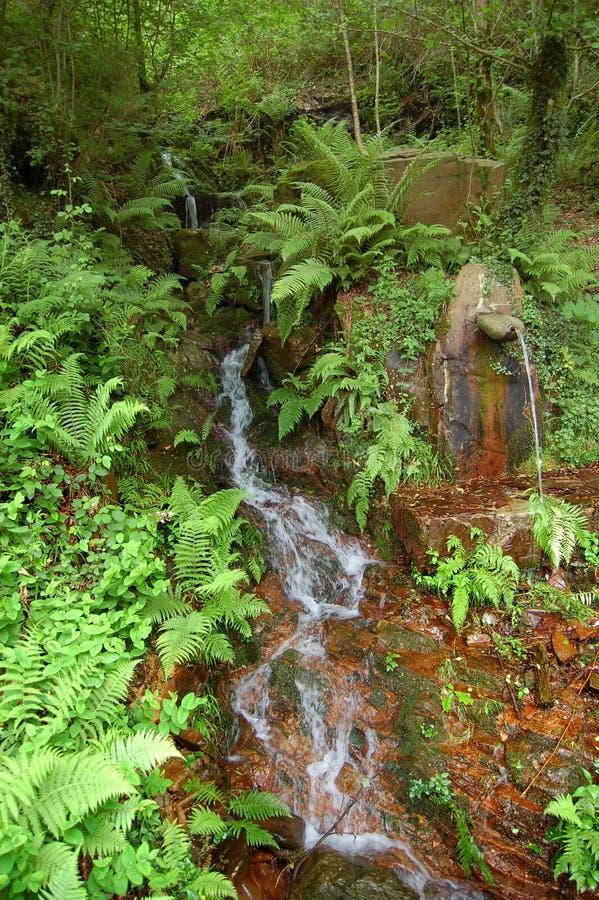 фонтан меньший водопад стоковое фото rf